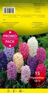 graines semis jacinthe 16 en m lange par 10 promo pack. Black Bedroom Furniture Sets. Home Design Ideas